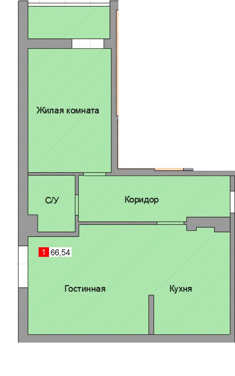 1-комнатная квартира (66,54 м²)