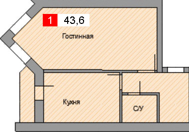 1-комнатная квартира (43,6 м²)