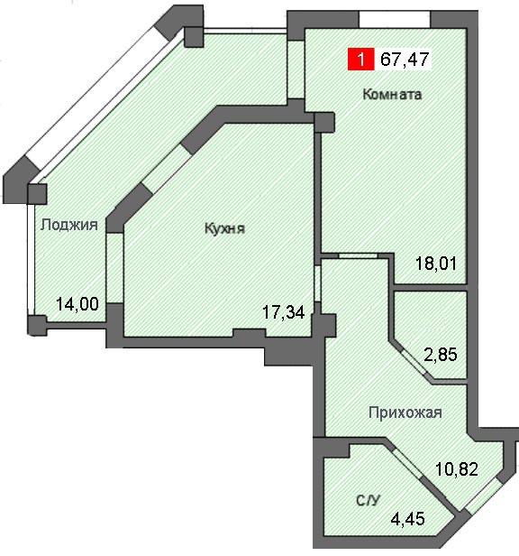 1-комнатная квартира (67,47 м²)