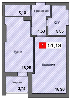 1-комнатная квартира (51,13 м²)
