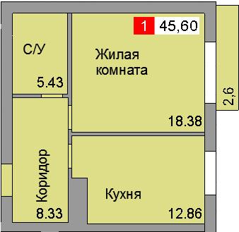 1-комнатная квартира (45,60 м²)