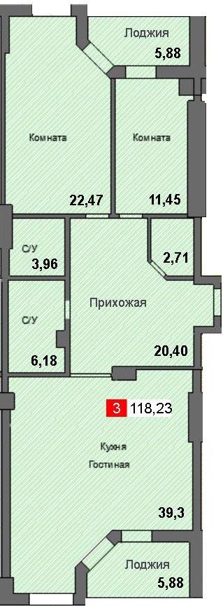 3-комнатная квартира (118,23 м²)