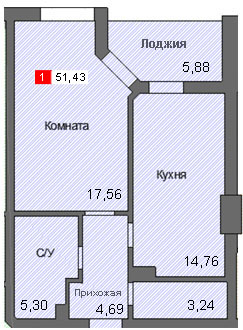 1-комнатная квартира (51,43 м²)